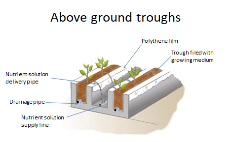 Trench or Trough Technique