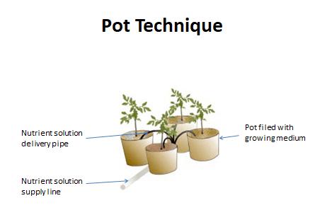 Pot Technique